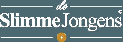 De Slimme Jongens | Domotica Zevenaar